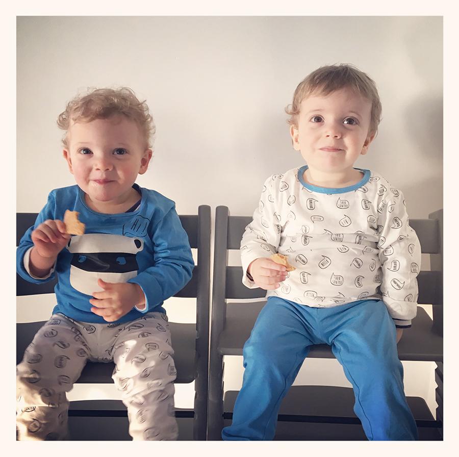Les Bébés Filles Jumeaux : Le